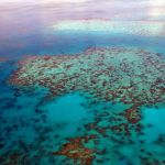 Urlaub, Bucketlist, Inspiration, Great Barrier Reef